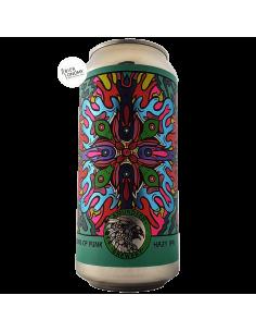 Bière ILLUSIONS OF FUNK Hazy IPA 44 cl Brasserie Amundsen