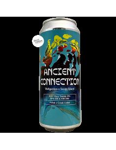 Bière Ancient Connection DDH Hazy DIPA 50 cl Brasserie Maltgarden Seven Island
