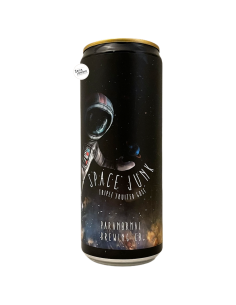 Bière Space Junk Triple Fruited Gose 33 cl Brasserie Paranormal