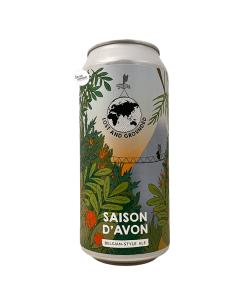 Bière Saison d'Avon 44 cl Brasserie Lost And Grounded