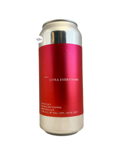 Bière Double Dry Hopped Small Citra Everything IPA 47,3 cl Brasserie Other Half