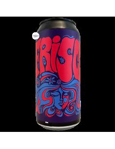 Bière Frisco Hazy IPA 44 cl Brasserie Hoppy Road