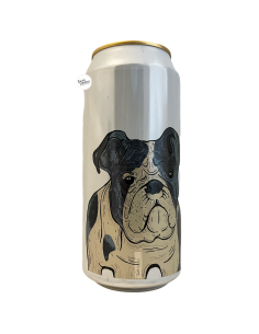 Bière Can I Have Some? Double NEIPA 44 cl Brasserie Fermenterarna