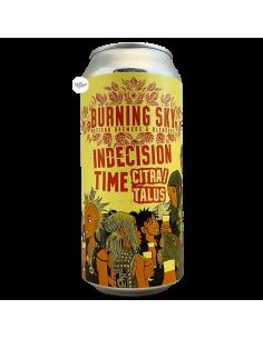 Bière Indecision Time Citra Talus Pale Ale 44 cl Brasserie Burning Sky