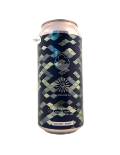 Bière Conditions of Possibility Grisette 44 cl Brasserie Cloudwater Brew Co