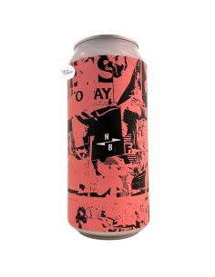 Bière Take Down Your Art Sour IPA 44 cl Brasserie North Brewing