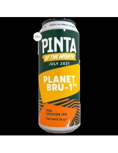 Planet BRU-1 DDH Session IPA 50 cl PINTA