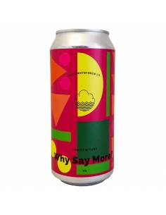 Why Say More? Sour IPA - 44 cl - Cloudwater