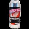biere-roadworks-in-the-sky-neipa-44-cl-neon-raptor-brewing-co