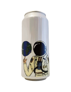 biere-space-up-this-world-imperial-gose-fermenterarna