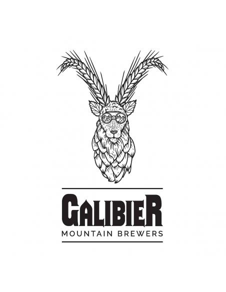 pack-assortiment-brasserie-galibier-bieres-artisanales-bieronomy-savoie-valloire