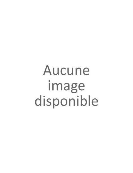 Brune d'Abbaye